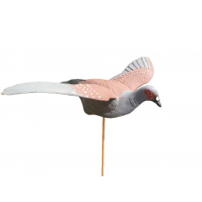 Rock Pigeon Shell Fixed Wing x 1 Decoy