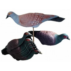 Rock Pigeon Shell Decoys x 10
